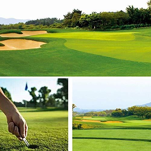 Nuluxi Horquilla de Reparación de Divot de Golf Campo de Horquilla de Golf Reparación Arreglapiques Golf Herramienta de Reparación Resistente y Estable Gran Accesorio Adecuado para Amantes del Golf